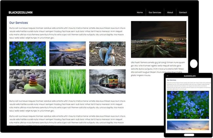 Free Bootstrap Template - Black2Column Theme